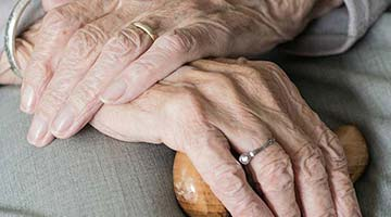 close-up of an elderly woman's hands on her lap holding a walking stick